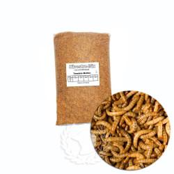 Larva de Tenebrio Deshidratado