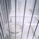 Anilla Bebedero anti-excrementos anti-baño