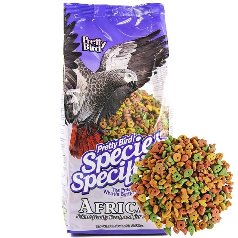 Pretty Bird AFRICAN Species Specific