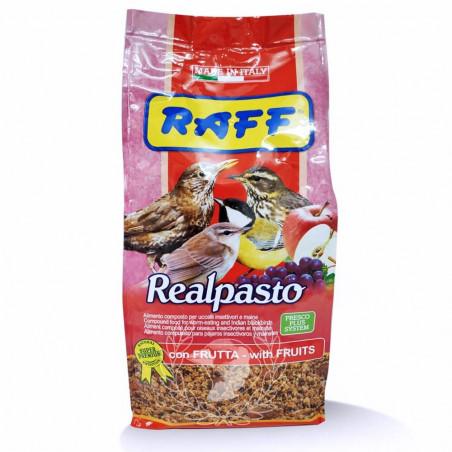 Raff Realpasto 1kg pasta para insectívoros con fruta