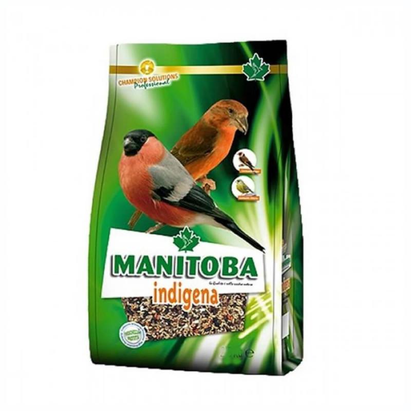 Manitoba Indígena 800 gr