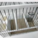 Papel Gofrado para fondo de jaula C2