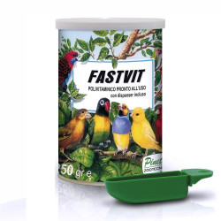 FastVit PINETA