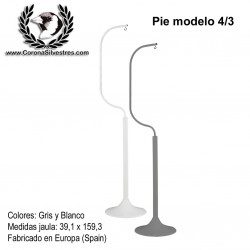 Pie modelo 4/3