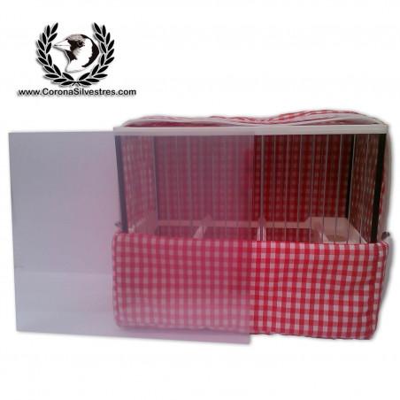Lamina Plástico transparente C 2