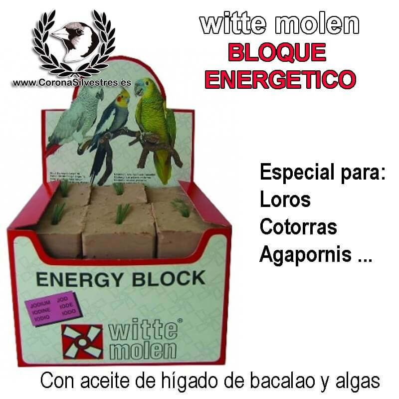 W.molen 1 uni. Bloque energético grande