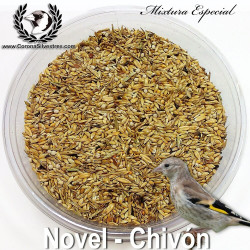 Mixtura para Novel - Chivón