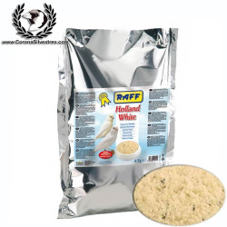 Raff Holland White pasta blanca 4 kg