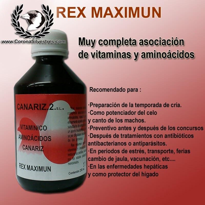 REX Maximun