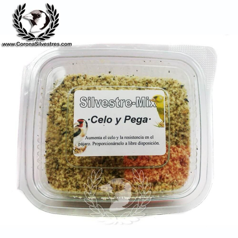Pasta Celo y Pega