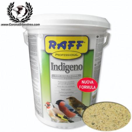 Raff Professional PASTA INDIGENO 2 kg